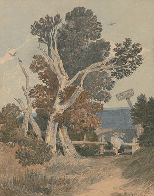 A Group Of Trees By A Fence Poster by John Sell Cotman