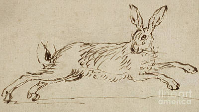 A Hare Running, With Ears Pricked  Poster