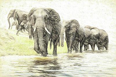 A Herd Of Elephants Poster