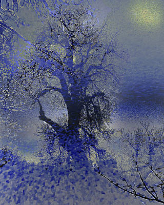 Poster featuring the photograph A Hoar Frost Morning by Irma BACKELANT GALLERIES