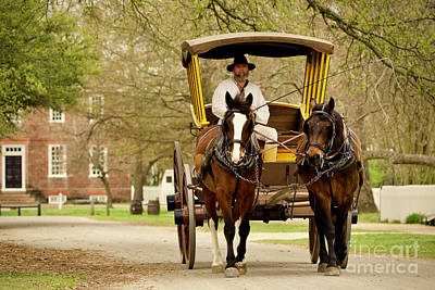 A Horse-drawn Carriage Poster by Rachel Morrison