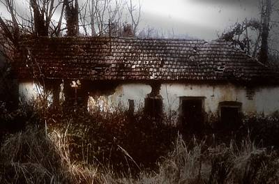 Poster featuring the photograph A House In The Woods by Mimulux patricia no No