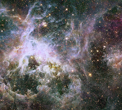Poster featuring the photograph A Hubble Infrared View Of The Tarantula Nebula by Nasa