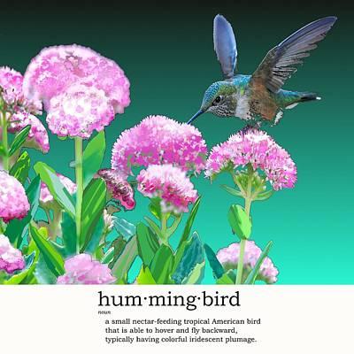 A Hummingbird Visits Poster