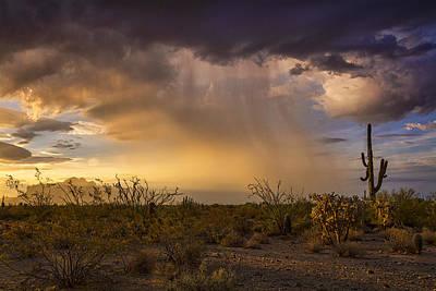 A Little Desert Rain  Poster by Saija  Lehtonen