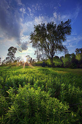 A Moment Or Two Poster by Phil Koch