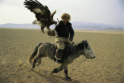 A Mongolian Eagle Hunter In Kazahkstan Poster by Ed George