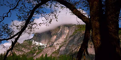 A Mountain View From The Giant Tree Trunk Side  Unsafe Tricky Arena With Landslides Clouds Hovering  Poster