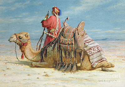 A Nomad And His Camel Resting In The Desert Poster