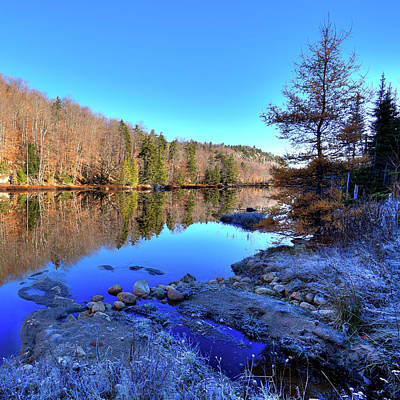 Poster featuring the photograph A November Morning On The Pond by David Patterson