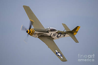 A P-51 Mustang Flies By At Waukegan Poster