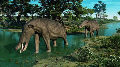 A Pair Of Platybelodon Grazing Poster