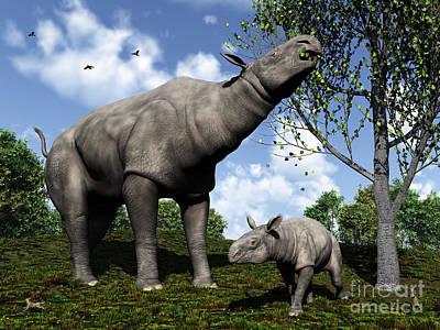 A Paraceratherium Mother Grazes Poster