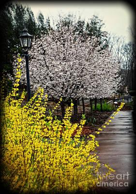 A Path Through The Garden Poster by Eva Thomas