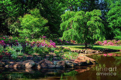A Peaceful Feeling At The Azalea Pond Poster by Tamyra Ayles