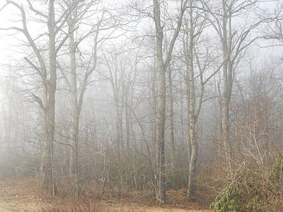 Poster featuring the photograph A Perfectly Beautiful Foggy Morning by Diannah Lynch