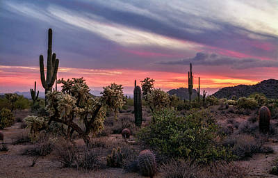 Poster featuring the photograph A Pink Kissed Desert Sunset  by Saija Lehtonen