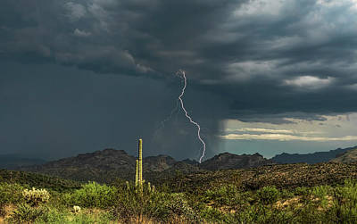Poster featuring the photograph A Rainy Sonoran Day  by Saija Lehtonen