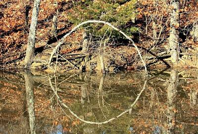 A Ring On The Pond In Fall Poster