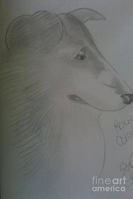 A Rough Collie Dog Poster