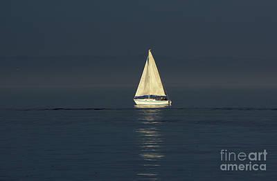 Poster featuring the photograph A Sailboat Capturing Light by Susan Wiedmann