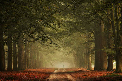 A Small World Poster by Martin Podt