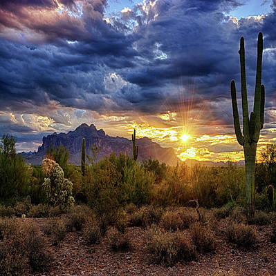 Poster featuring the photograph A Sonoran Desert Sunrise - Square by Saija Lehtonen