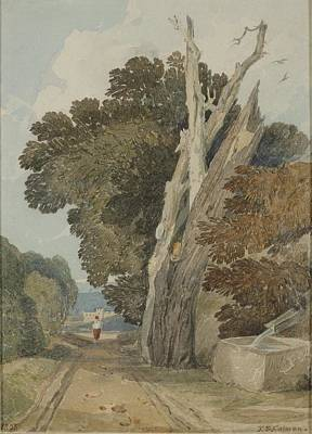 A Spanish Chestnut Tree Poster by John Sell Cotman
