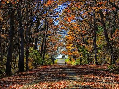 A Stroll Through Autumn Colors Poster