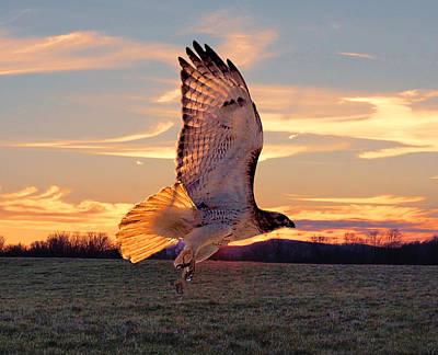 A Sunset Flight Poster
