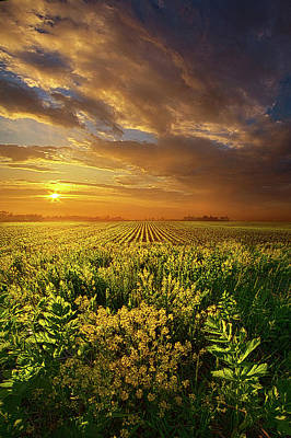 A Time Of Gifts Poster by Phil Koch