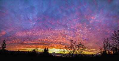 Poster featuring the photograph A Winter Sunrise by Angie Vogel