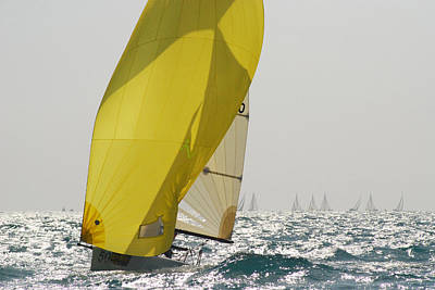 A Yellow Spinnaker Is Lit Poster by Hibberd, Shannon