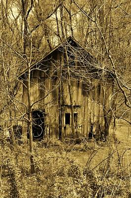 Abandoned Barn In Woods Poster