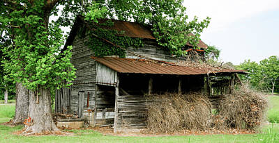 Abandoned Barn Southern Tennessee Poster