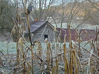 Abandoned Farmhouse And Cornfield Poster by Douglas Barnett