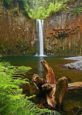 Abiqua Falls Oregon Poster by Ulrich Burkhalter