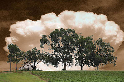 Above The Cotton Fields Poster by Jan Amiss Photography