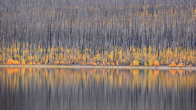 Poster featuring the photograph Abstract Autumn by Al Swasey