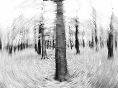 Abstract Black And White Nature Landscape Art Work Photograph Poster by Artecco Fine Art Photography