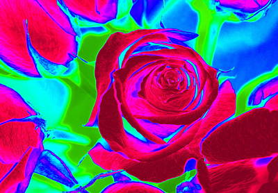 Abstract Burgundy Roses Poster