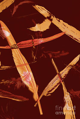 Abstract Feathers Falling On Brown Background Poster