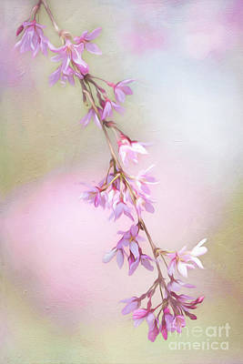 Abstract Higan Chery Blossom Branch Poster