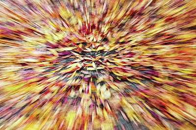 Poster featuring the photograph Abstract Leaves 1 by Rebecca Cozart