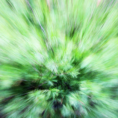 Poster featuring the photograph Abstract Leaves 7 by Rebecca Cozart