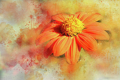 Abstract Orange Flower Poster