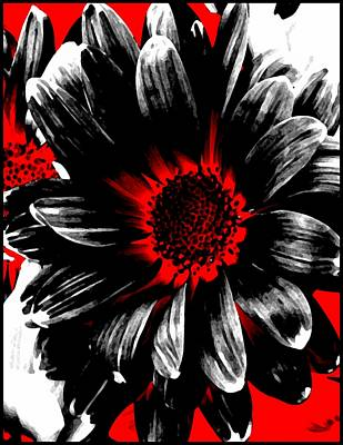Abstract Red White And Black Daisy Poster by Angelina Vick