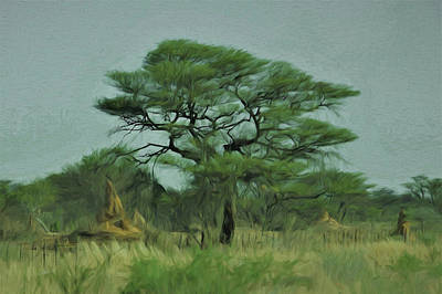 Poster featuring the digital art Acacia Tree And Termite Hills by Ernie Echols