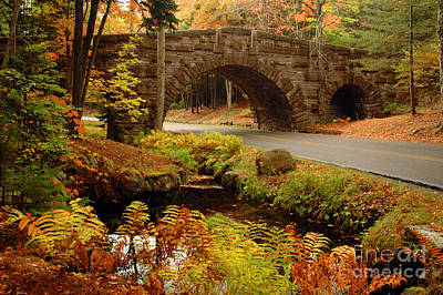 Poster featuring the photograph Acadia Stone Bridge by Alana Ranney