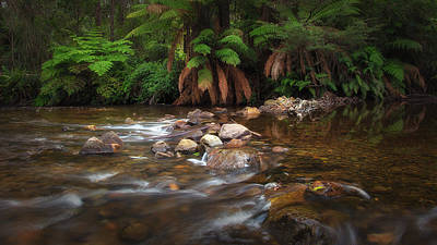 Poster featuring the photograph Acheron River by Tim Nichols